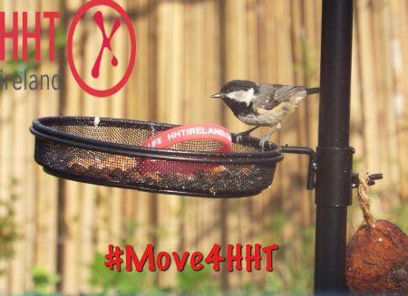 HHT-Birds